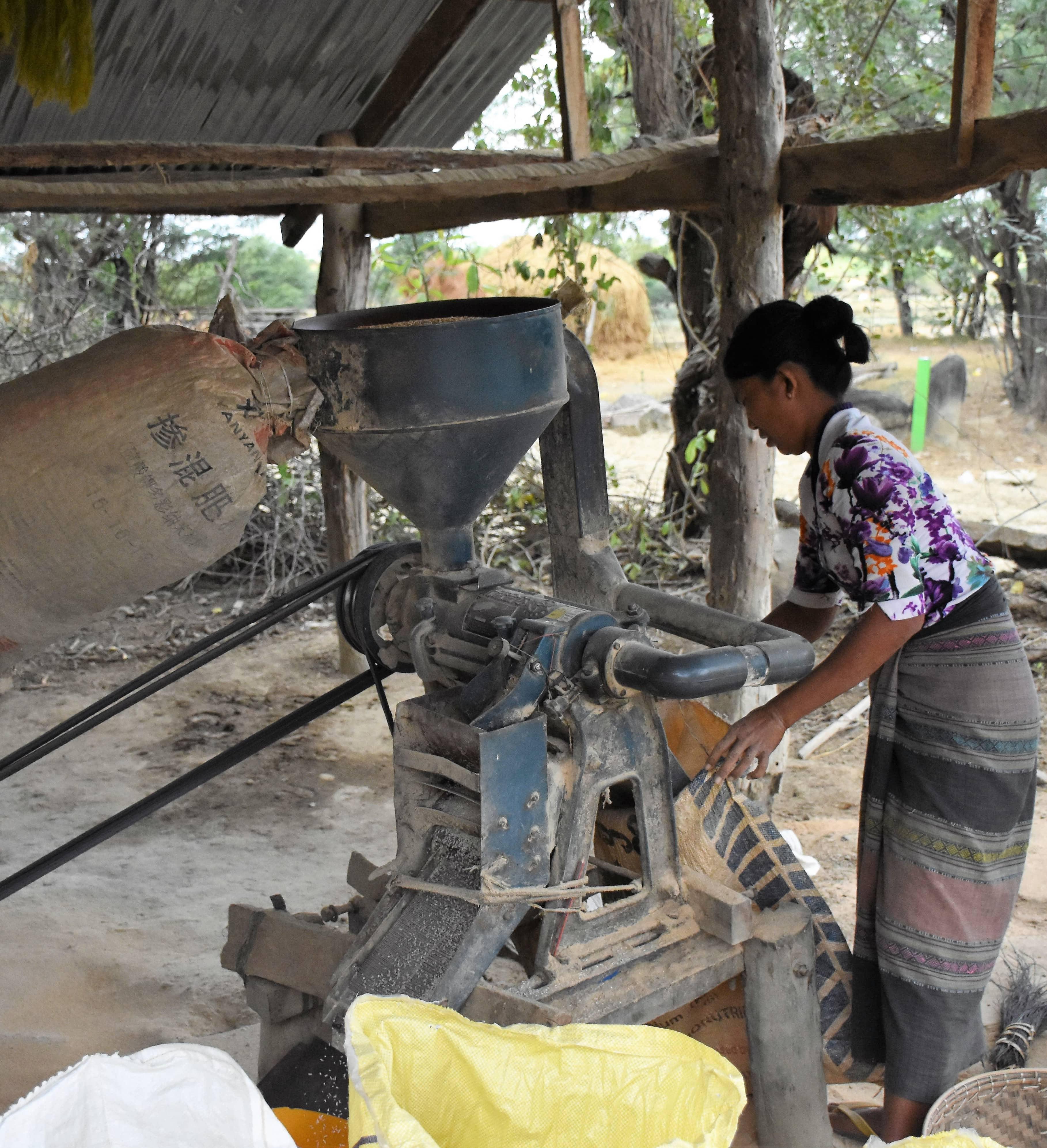 Rice mill copie-min